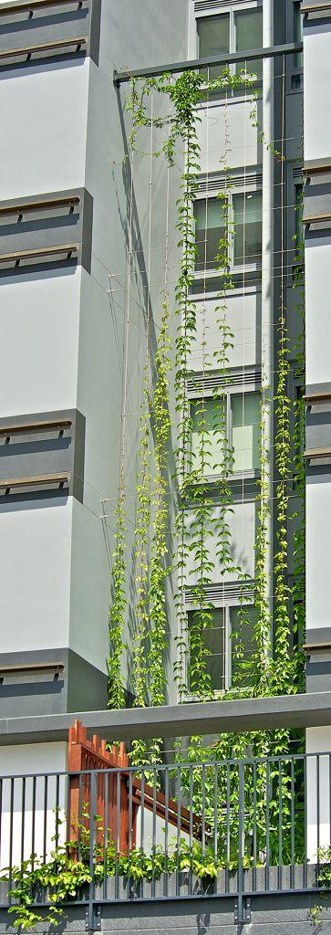 Circa Dos Apartments, Queensland   Innovative Rigging Systems. An excellent…