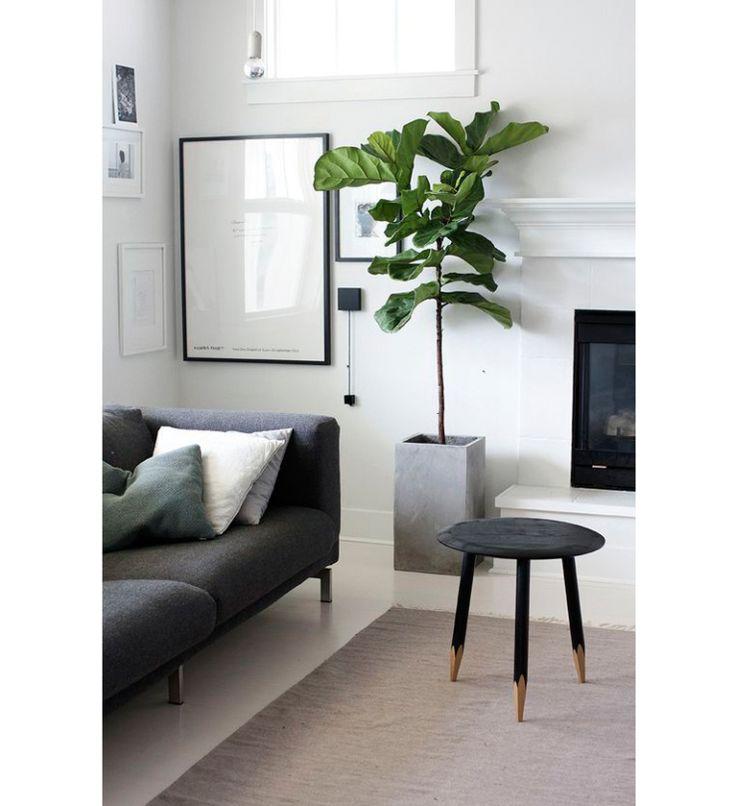 Een grote kamerplant in huis: zo style je 'm