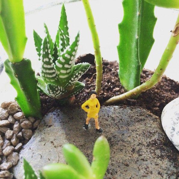 29 best inspiration plantes images on pinterest inside garden house plants and green plants. Black Bedroom Furniture Sets. Home Design Ideas