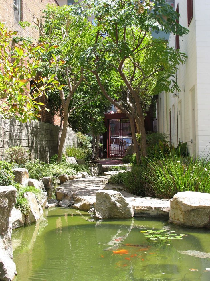 Image result for chuang garden san diego