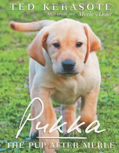 14 best books images on pinterest doggies dogs and adorable animals pukka the pup after merle by ted kerasote http fandeluxe Choice Image