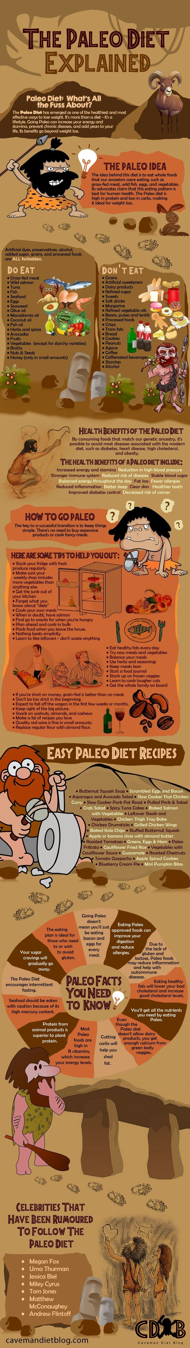 The Paleo Diet Explained - Fantastic infographic full of information about the\u2026 #weightlossrecipes