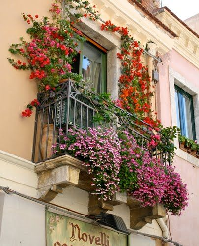 Colour, allowing the plants to grow a little wild and overflow beyond the permetre of the balcony