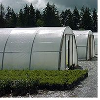 Ideas: Greenhouse Megastore | Greenhouses, Greenhouse Supplies, Garden Supplies