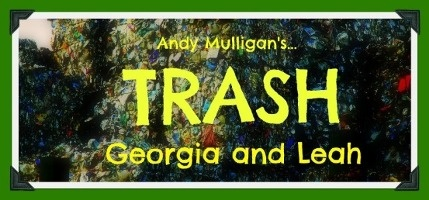 trash by andy mulligan essay Trash-andy mulligan trash essay planner thank you brave standing up to the police but also lying about it- i found ashoe page 13 raphael was very brave when.