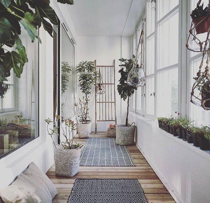 Ce couloir vitré a été aménagé comme un jardin dhiver