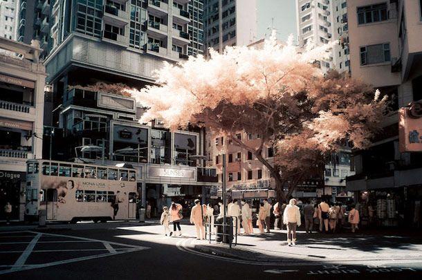 Hong-Kong en photographie infrarouge | Yiu Yu Hoi