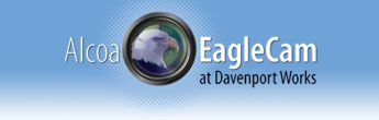 Live feed on an Eagles nest at Alcoa~~ Davenport , Iowa