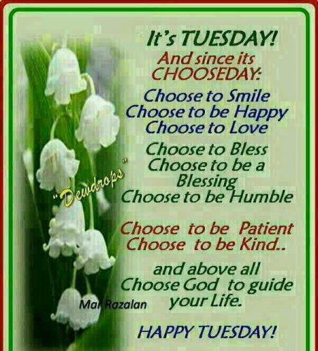 Tuesday is Choose Day
