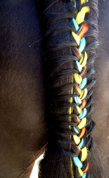 Horse tail braid with colored ribbon. Need to try with show colors Learn about #HorseHealth #HorseColic www.loveyour.horse