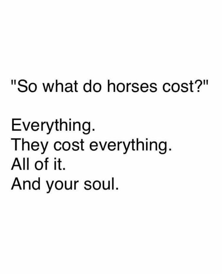 The cost of horses