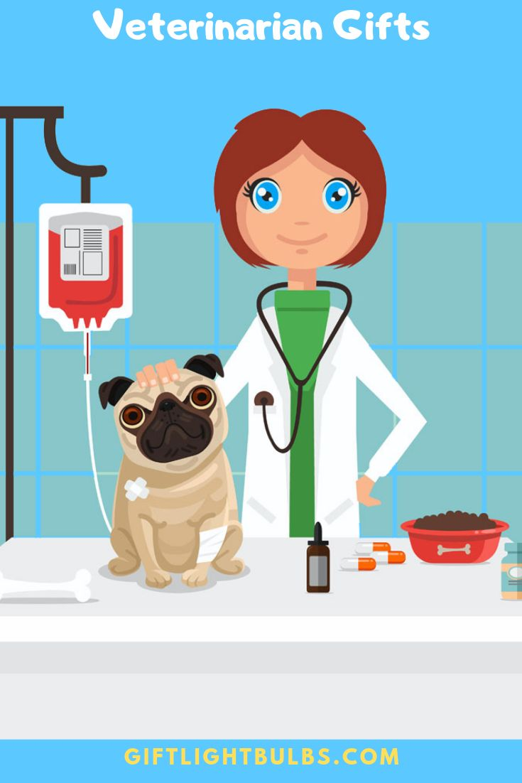 Best Gifts For Veterinarians 2021