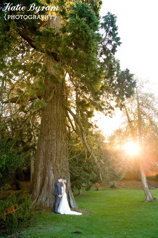 Gorgeous tree in the grounds of Ellingham Hall     http://www.photographybykatie.co.uk