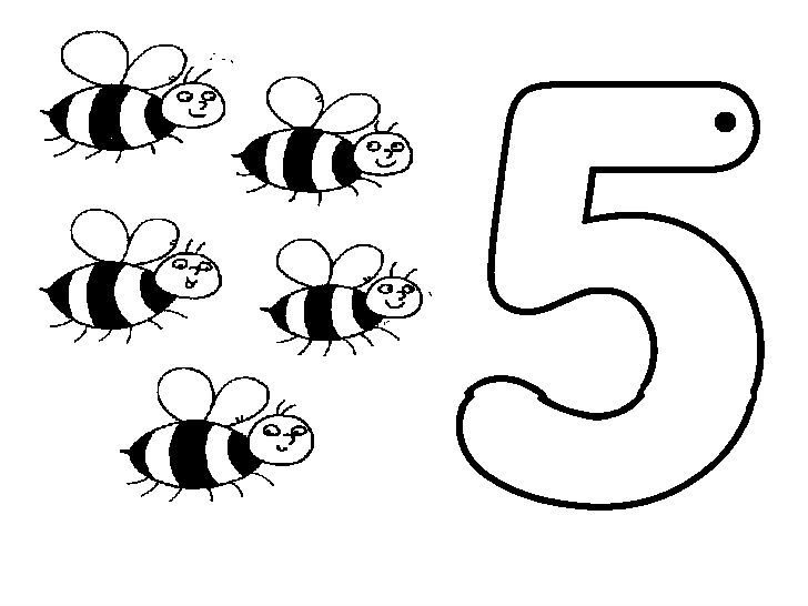 Animal Numbers Five Bees