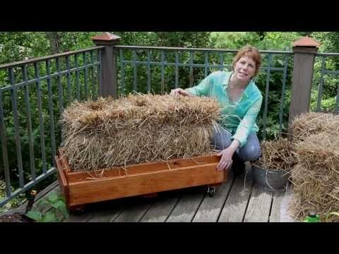 How to Condition and Plant a Straw Bale - YouTube
