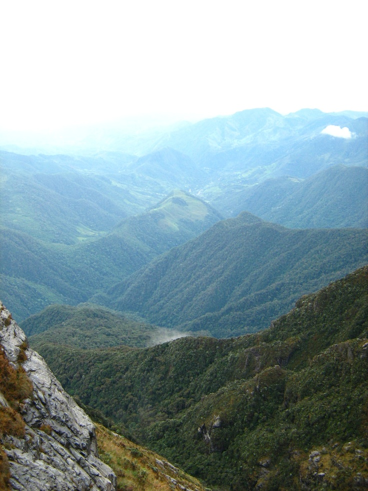Slopes of the Farallones de Cali, Colombia National Park, Cali, Valle del Cauca, Colombia.