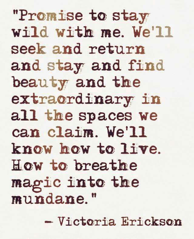 Lovely Quotes Promise To Stay Wild With Me  Love Actually  Pinterest  Stay Wild
