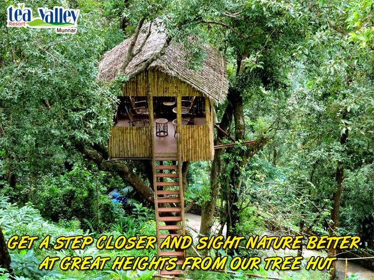 For those who look to spent their vacation truly in the midst of nature, we have this wonderful 'Tree Hut' exclusively for you. Relax here and enjoy the beauty of natural Munnar unhindered