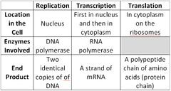 Basic explanation chart of dna replication, transcription & translation