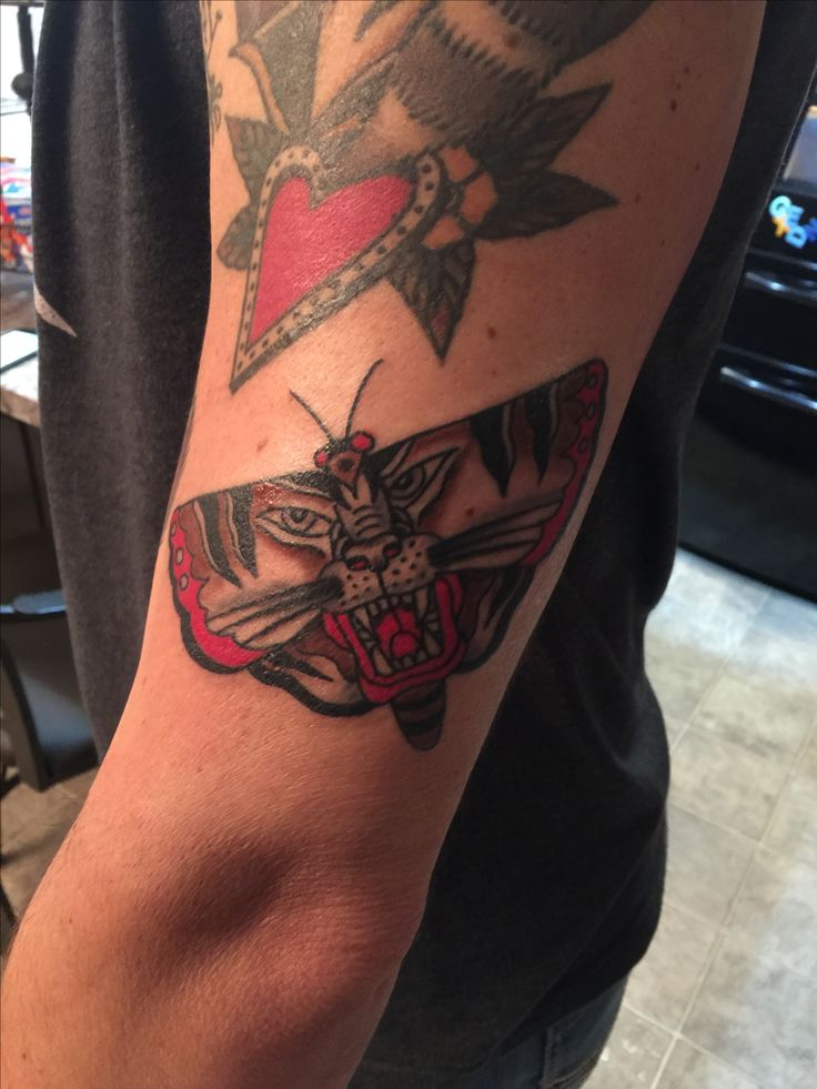 Moth tiger American traditional tattoo Ryan Cooper Thompson