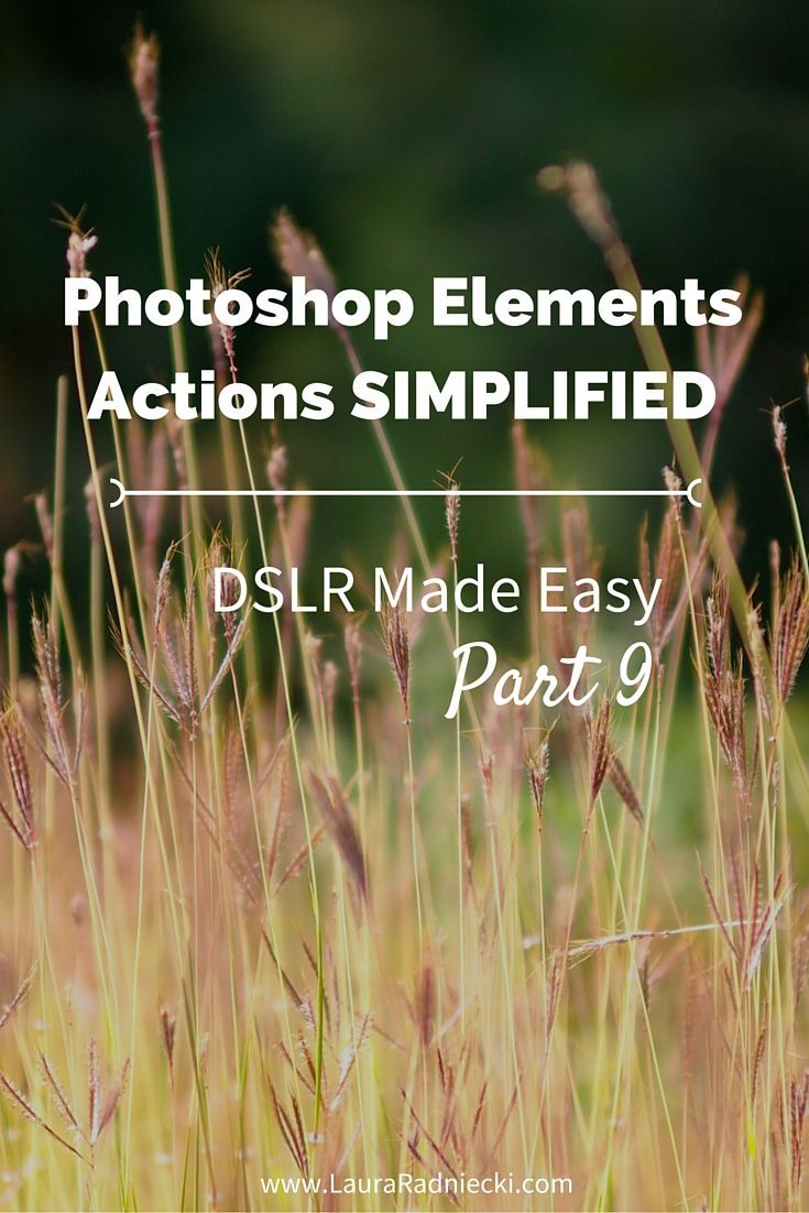 DSLR Made Easy: Part 9 - Photoshop Elements Actions Simplified. This is the ninth post in a blog series about the basics of photography. In this post, Actions for Photoshop Elements are discussed and explained in detail.