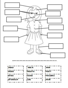 body parts worksheet label english cut names activities simple students its spanish worksheets ell ask sheet esl glue teaching science