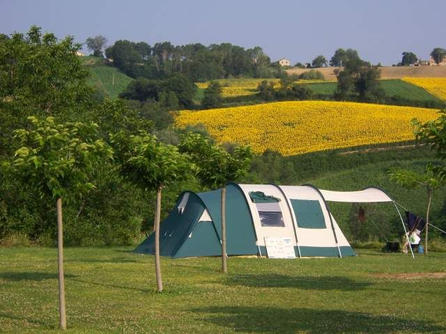 Camping Picobello, Le Marche