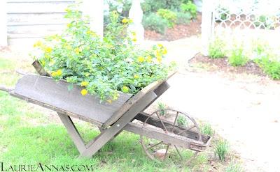 Love old wheelbarrows filled with Lantana, so pretty for a farmhouse yard.