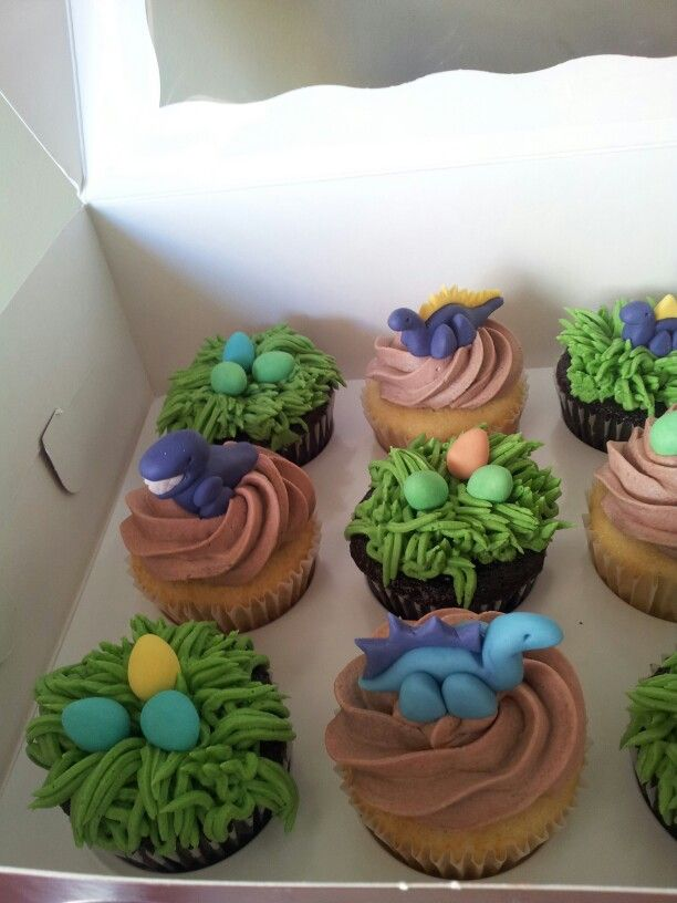 Dinosaur Cupcakes - maybe do yoghurt covered sultanas for eggs and coconut cream for icing, with plastic dinosaurs.
