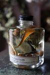 スタッキングボトルのハーバリウムに引き続きアレンジとガラスのジャーアレンジを cross×lab さんへ納品しました。ドライアンドラ、エキナセア、ルドベキ...