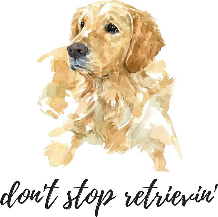 Don T Stop Retrievin Watercolor Dog Sticker By Daria Smith Watercolor Dog Dog Stickers Golden Retriever