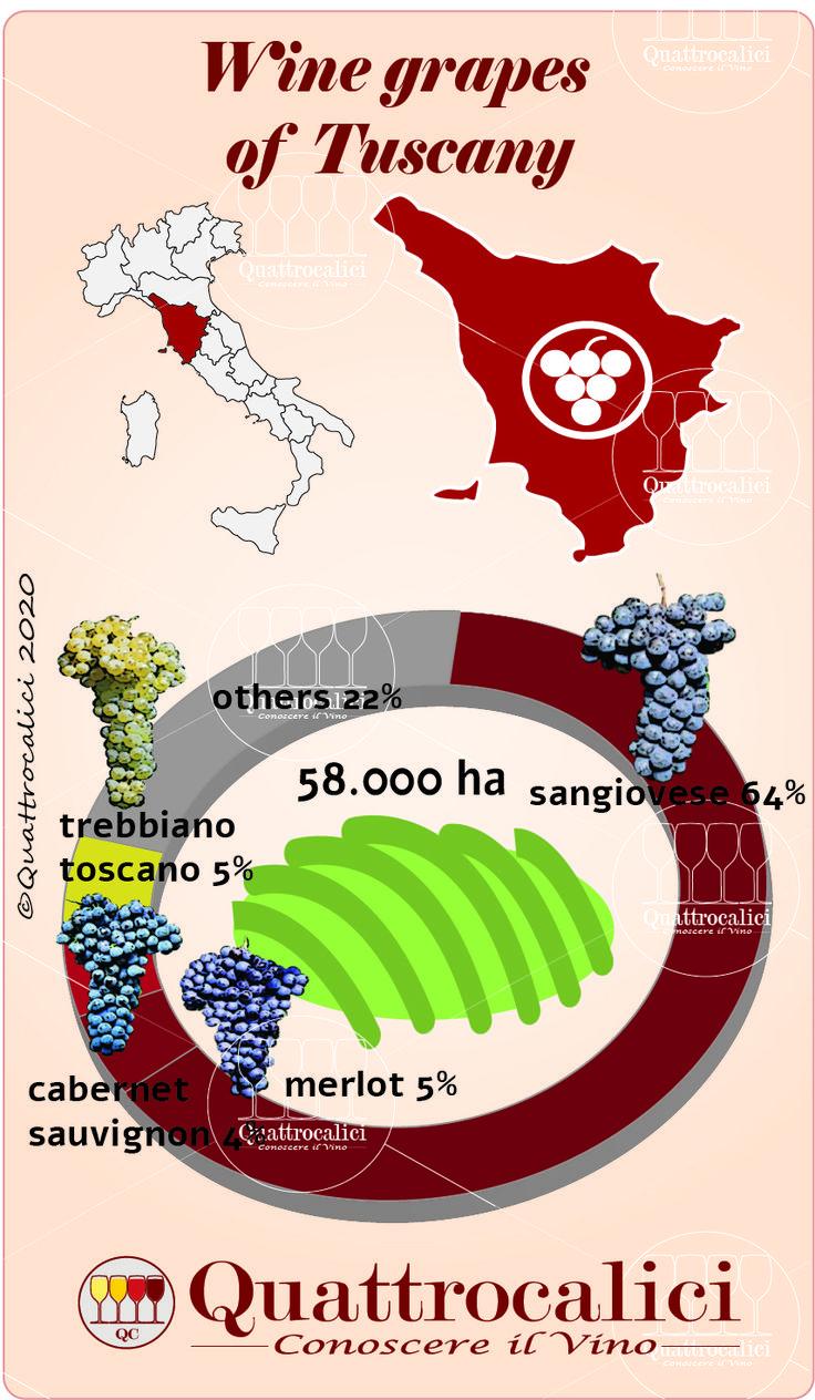 ボード「Studio sul vino」のピン