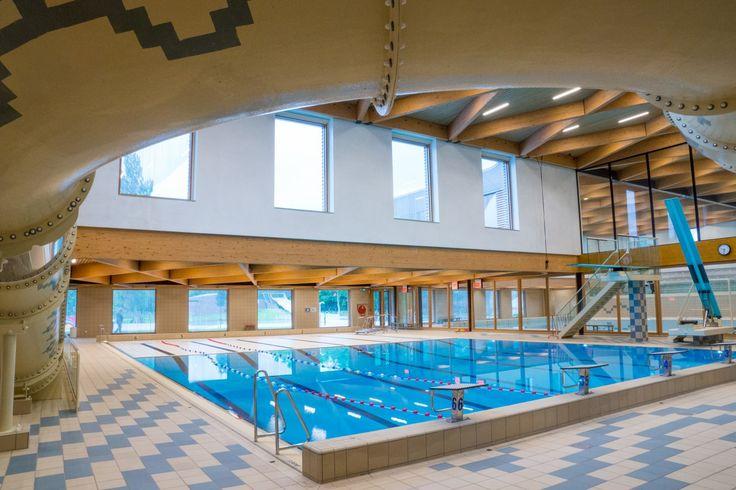 157 best type swimming pool images on pinterest - Public swimming pools north las vegas ...