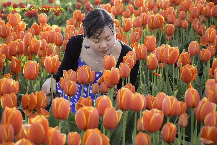 Tulip season. Lots of beautiful tulips and other flowers. Model: Teresa So