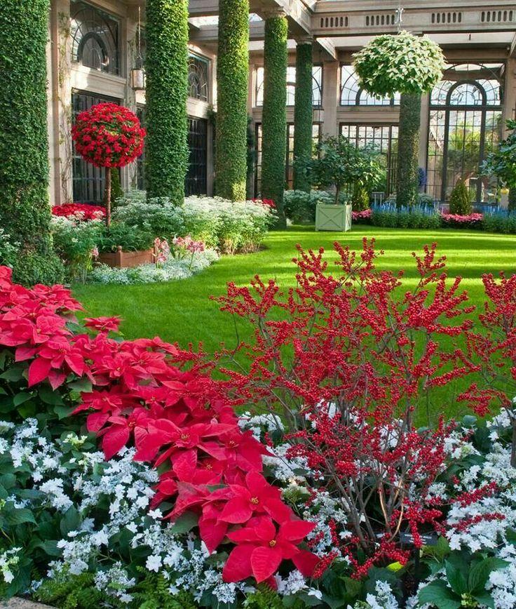 Top 25 ideas about flores bico de papagaio on pinterest - Places to eat near longwood gardens ...