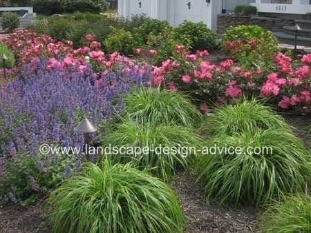 Front yard design with lots of colorful perennials.