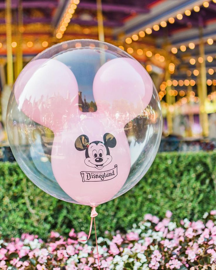 "1,656 Likes, 54 Comments - Cindy °o° (@cindyrelly._) on Instagram: ""On Wednesdays, we stalk pink balloons . Walt Disney World I Disney Pictures I Beautiful Disney I Pictures of Disney"