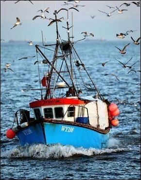 Town's last fishing boat fights tide and time - Telegraph