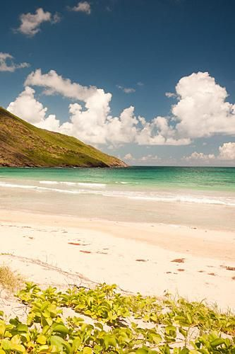 St Kitts-one of the most under-developed islands - check it out soon while it is still natural and beautiful