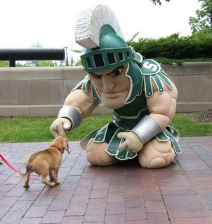 sparty has a gentle side lol: Msu Spartan, Sparti 3Perfect, 3 Perfect Men, Favorite Things, Small Dogs, Aw Sparti, Big Men, Msuspartan, Cute Msu Shirts
