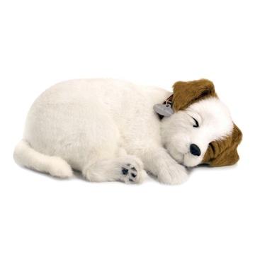 Jack Russel Oyuncak Köpek. Tıpkı gerçek gibi...   Sevimli yavru köpek tıpkı gerçek bir köpek gibi nefes alıp veriyor ve yumuşak yatağında usluca uyumaya devam ediyor. Arada sırada fırçası ile onu taramanız yeterli.   Uyku minderi, isimlikli tasması, fırça, evlat edinme sertifikası kutusunda yer alıyor. #continuum #JackRussel #oyuncakkopek