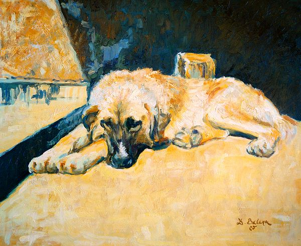 Sad dog. Contemporary #impressionist oil painting by Dusan Balara