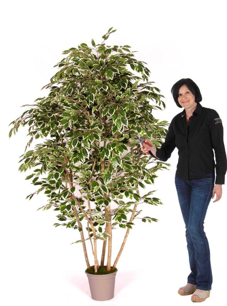 Parete Piante Artificiali : Migliori idee su piante artificiali pinterest