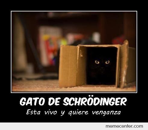 Gato de Schrödinger by ben - Meme Center