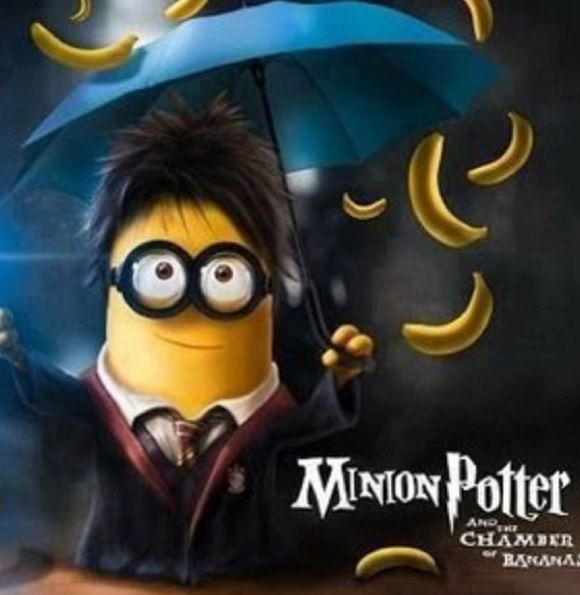 Harry Potter and Despicable me