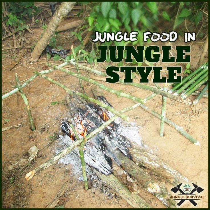 Master the art of cooking food in jungle style by enrolling for #JungleSurvivalTraining camp right away. Book Here: http://www.bandhavgarh365.com/jungle-survival-activity/ #wildernesssurvival