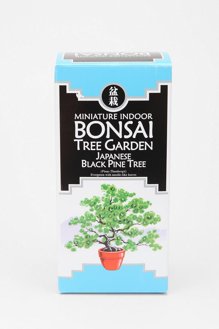 Huarache Sandals Urban Outfitters Bonsai Tree