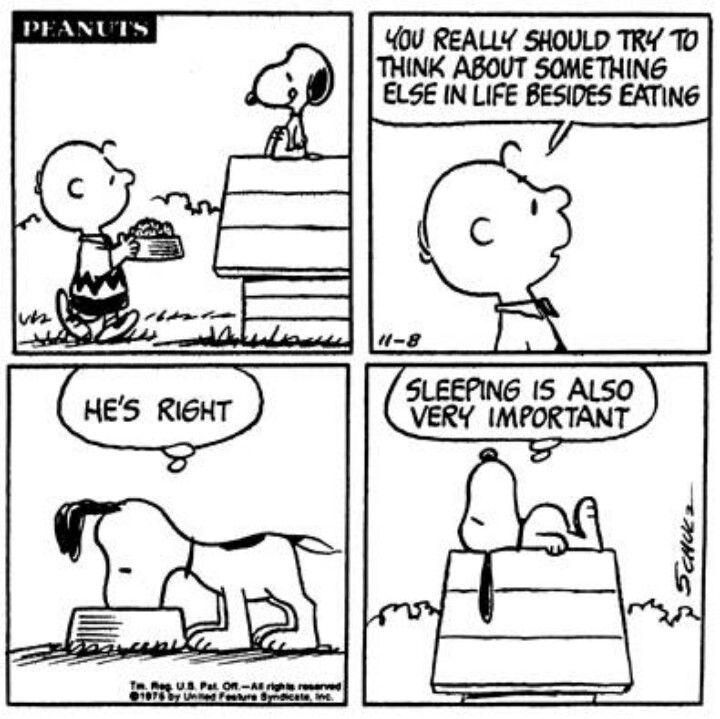 Snoopy...sleep...raining...Sunday..Ahhhhhhh!