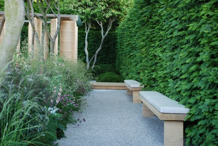 laurent Perrier garden Luciano Guibbilei Chelsea 2011 - would this sort of arrangement work with our hedge