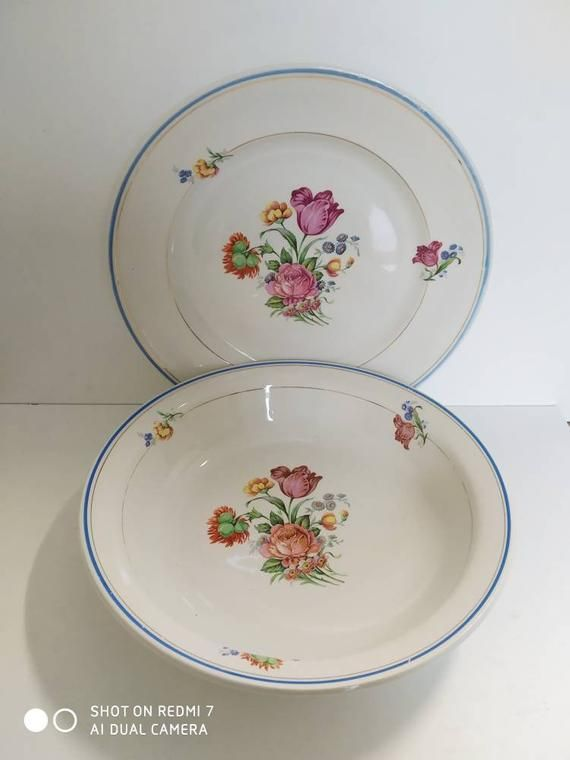 Six French Ironstone dinner plates St Amand